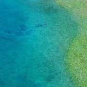 Pour And Famous