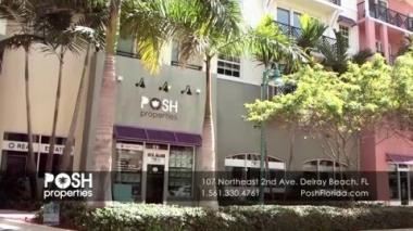 Business Profile - Posh Properties